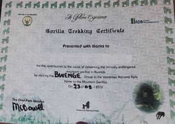 rwanda gorilla permits certificate